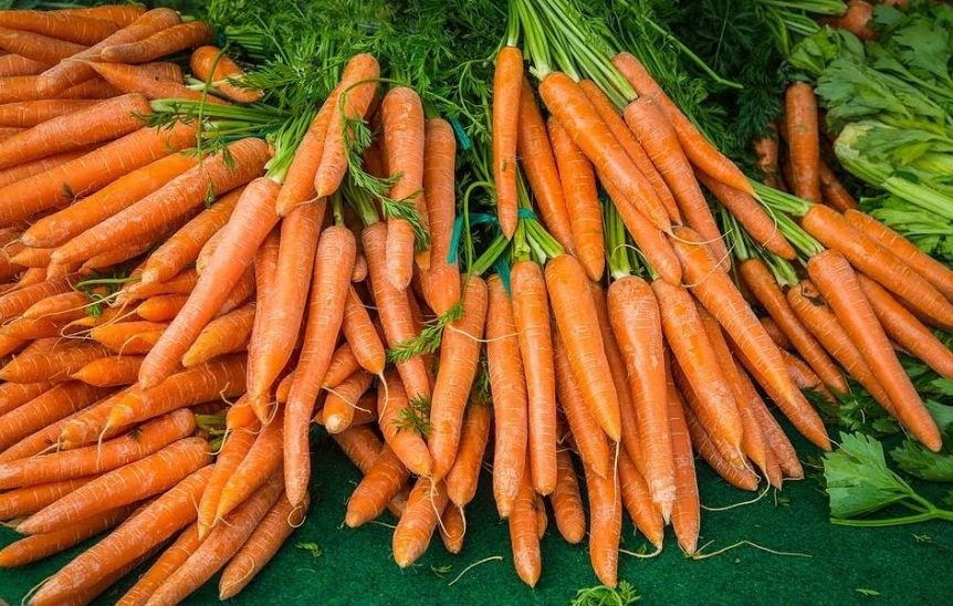 Dafna-Moroccan-Carrot-Salad-NTI-School.JPG