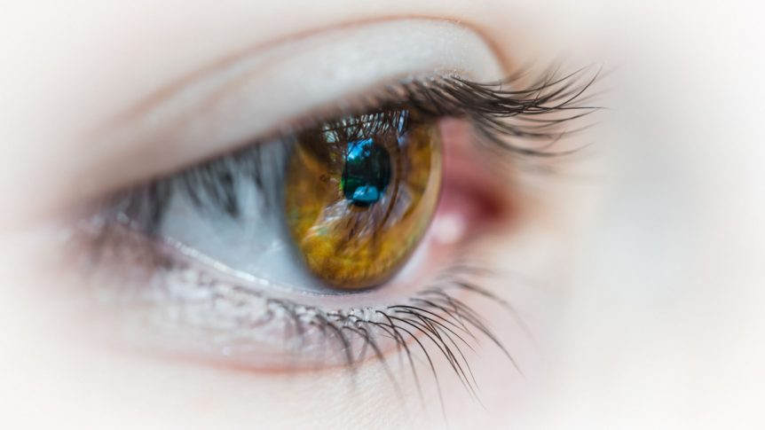 Holistic Health - Nutrition Therapy for Eyes and Vision