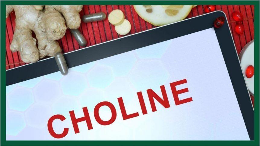 Choline Photo