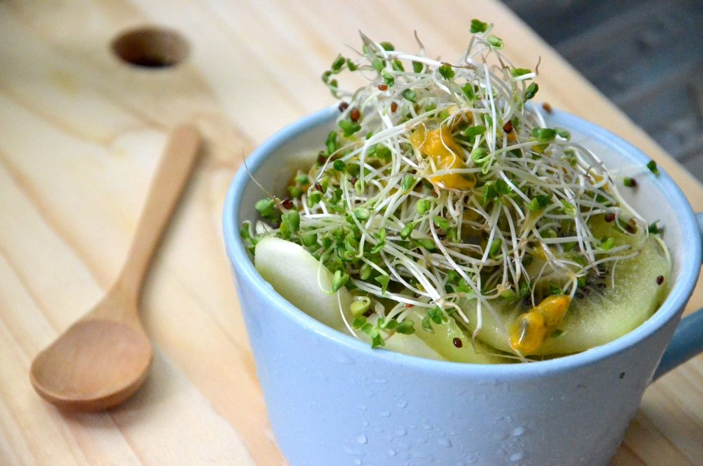Broccoli Sprouts Image