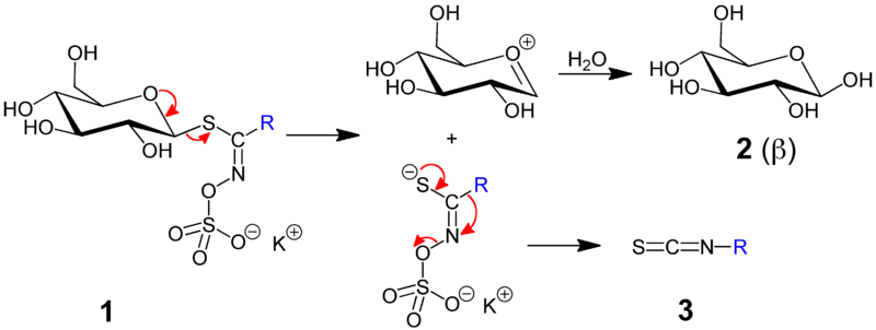 Isothiocyanate Reaction Image